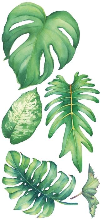 Zielone liście Zestaw naklejek - Zestawy naklejek
