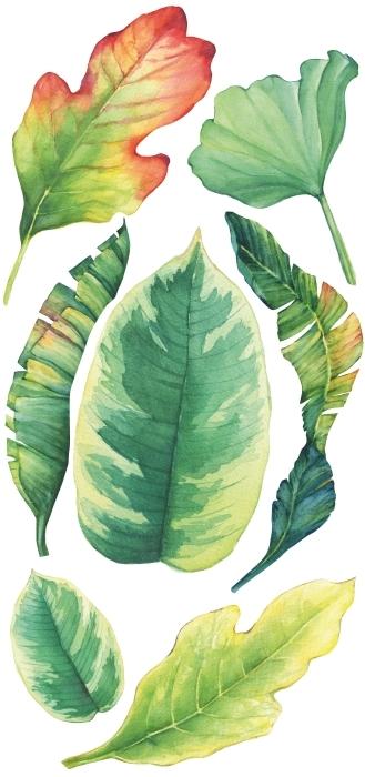 Akwarelowe liście Zestaw naklejek - Zestawy naklejek
