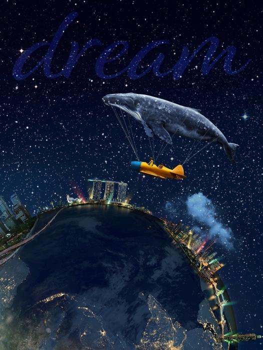 Fotomural Estándar Dream -
