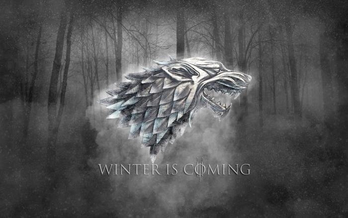 Papier peint vinyle Winter is coming - Thèmes