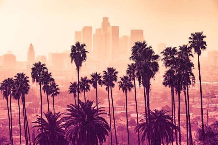 Kendinden Yapışkanlı Duvar Resmi Ön planda palmiye ağaçları ile Los Angeles kenti silüetinin -