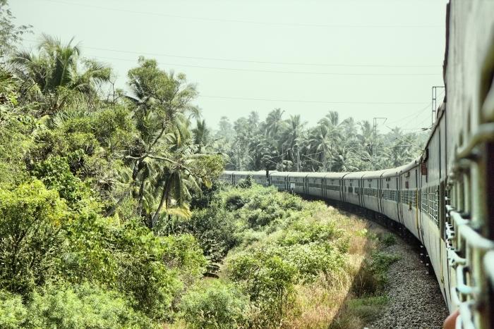Papier peint vinyle Chemins de fer indiens. Chemin de fer branche traverse la forêt de palme -