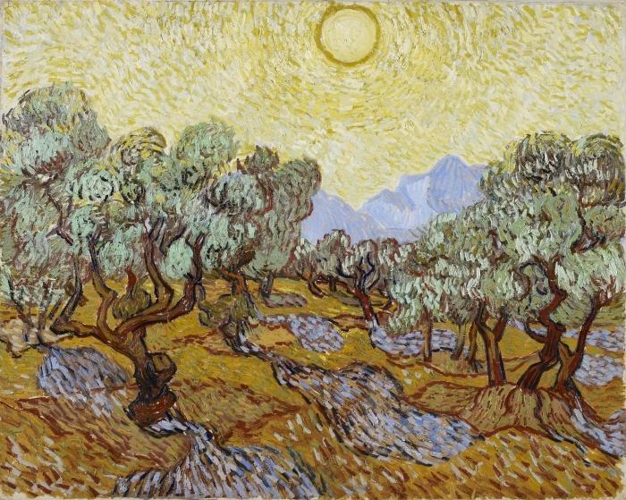Papier peint vinyle Vincent van Gogh - Oliveraie - Reproductions
