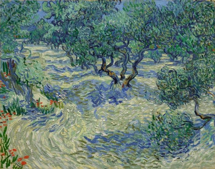 Fotomural Estándar Vincent van Gogh - Surco de olivos - Reproductions