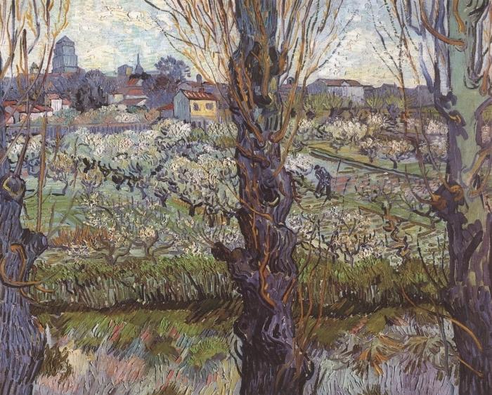 Papier peint vinyle Vincent van Gogh - Verger en fleur avec vue d'Arles - Reproductions