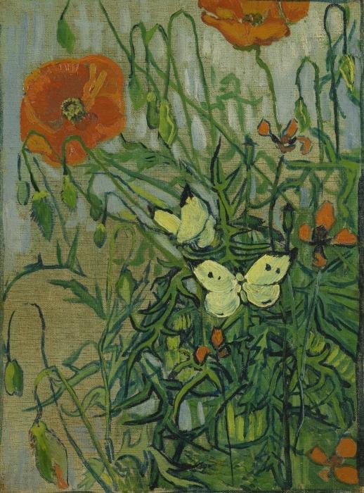 Papier peint vinyle Vincent van Gogh - Coquelicots et papillons - Reproductions