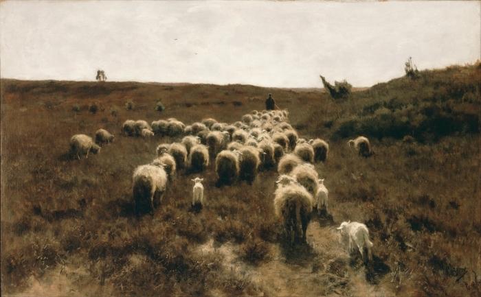 Papier peint vinyle Anton Mauve - Le retour du troupeau, Laren - Reproductions
