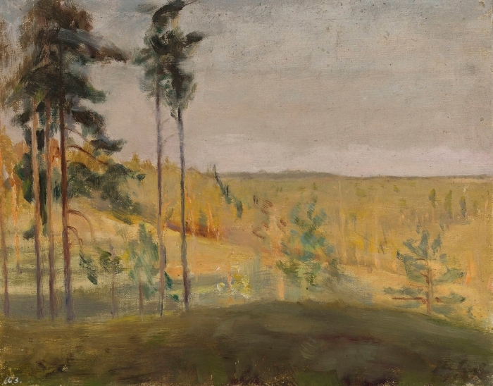 Papier peint vinyle Jan Ciągliński - Terioki - Finlande - Reproductions