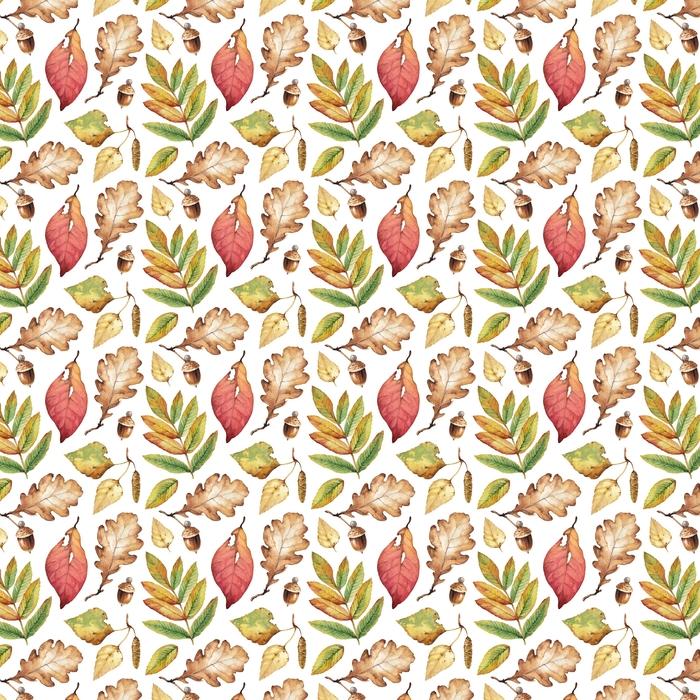 Akwarela ilustracje liści. wzór