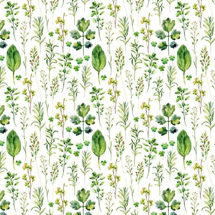 Afwasbaar behang, op maat gemaakt Aquarel weide onkruid en kruiden naadloze patroon - Bloemen en Planten