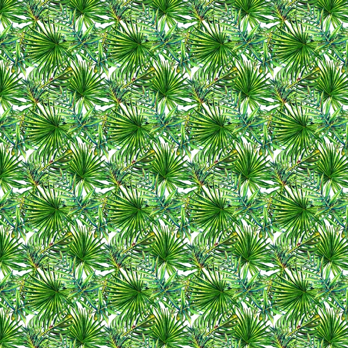 Abwaschbare Tapete nach Maß Nahtloses Blumenmuster mit tropischen Palmblättern des Aquarells. Dschungel Laub auf weißem Hintergrund. Textildesign. - Grafische Elemente