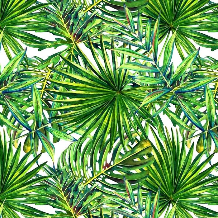 Afwasbaar behang, op maat gemaakt Naadloze bloemmotief met aquarel tropische palmbladeren. jungle gebladerte op witte achtergrond. textiel ontwerp. - Grafische Bronnen