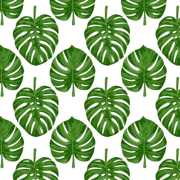 Afwasbaar behang, op maat gemaakt Monstera naadloos patroon - Grafische Bronnen