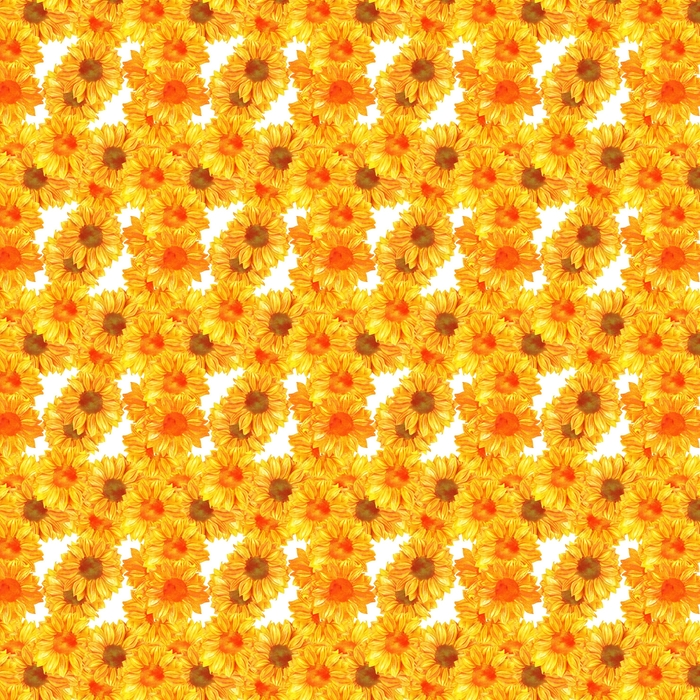 Wzór z toned akwarela słoneczniki