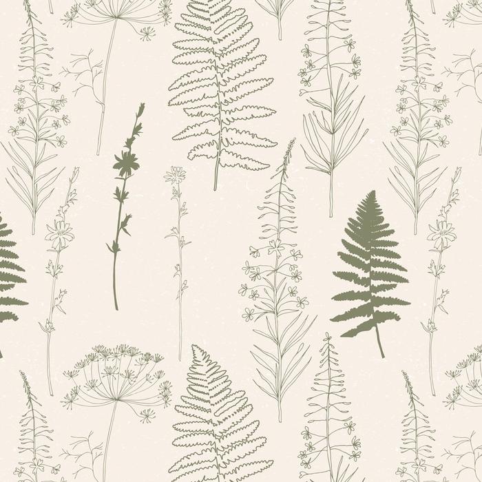 Afwasbaar behang, op maat gemaakt Vector naadloze patroon met hand getrokken cichorei, dille of venkel bloemen, wilgenroosje en fern verlaat. dunne lijnen bloemen en planten silhouetten in kaki groen op beige achtergrond met versleten textuur. - Bloemen en Planten