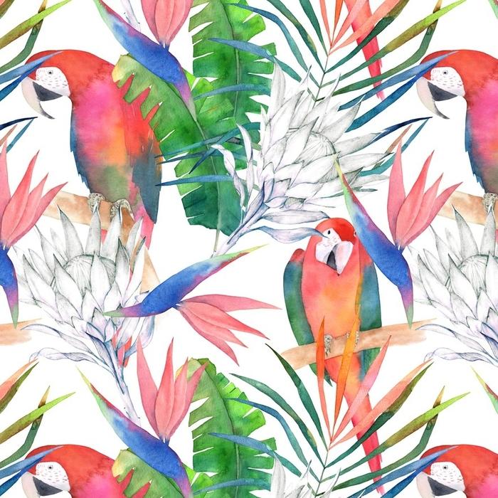 Afwasbaar behang, op maat gemaakt Tropische naadloze patroon met papegaaien, protea en bladeren. aquarel zomer print. exotische hand getrokken illustratie - Grafische Bronnen
