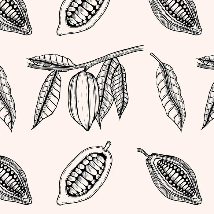 Afwasbaar behang, op maat gemaakt Naadloze patroon van cacaobonen. - Grafische Bronnen