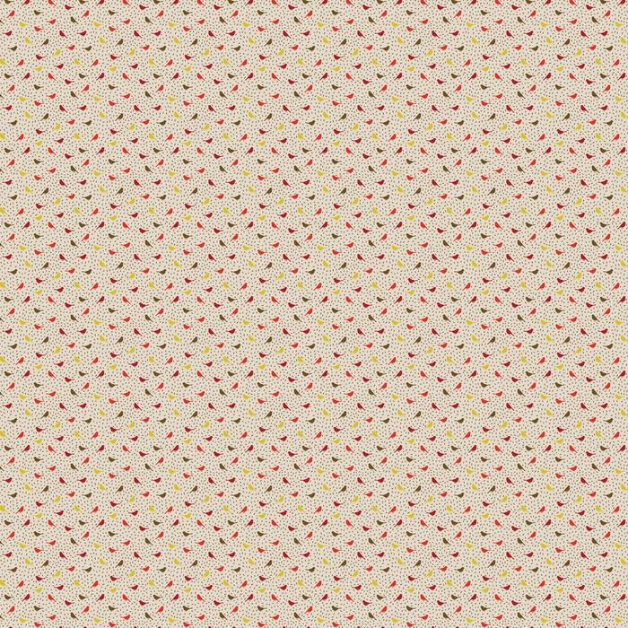 Ptaki seamless pattern. Kolorowe tekstury