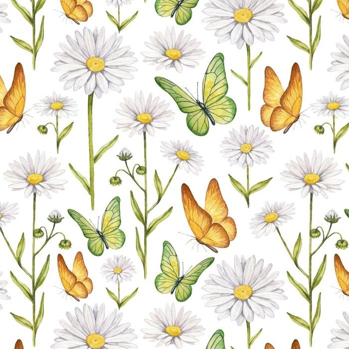 Afwasbaar behang, op maat gemaakt Kamille bloemen en vlinders illustratie - Grafische Bronnen
