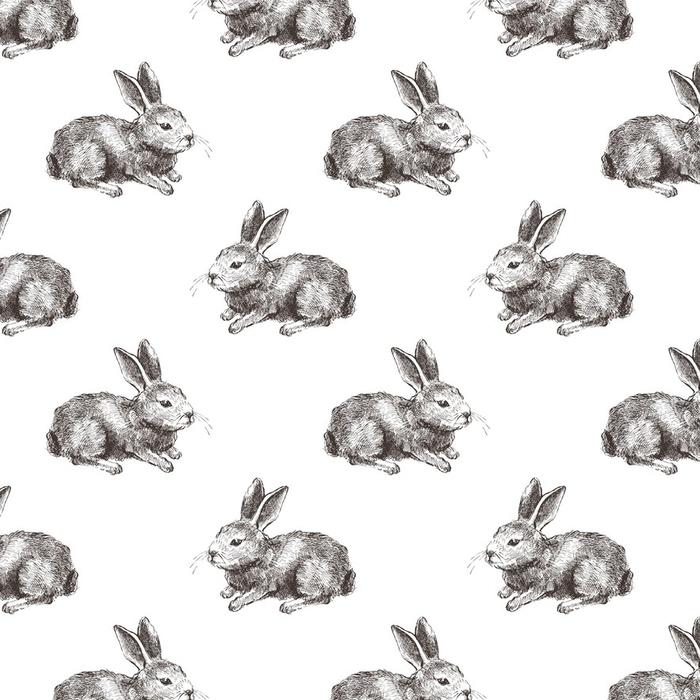 Papier peint lavable sur mesure Modèle sans couture avec lapin dessiné à la main - Animaux