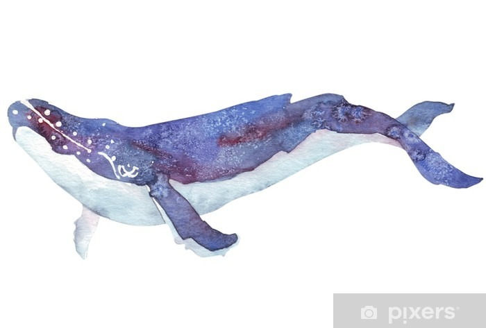 watercolor whale Pixerstick Sticker - Animals