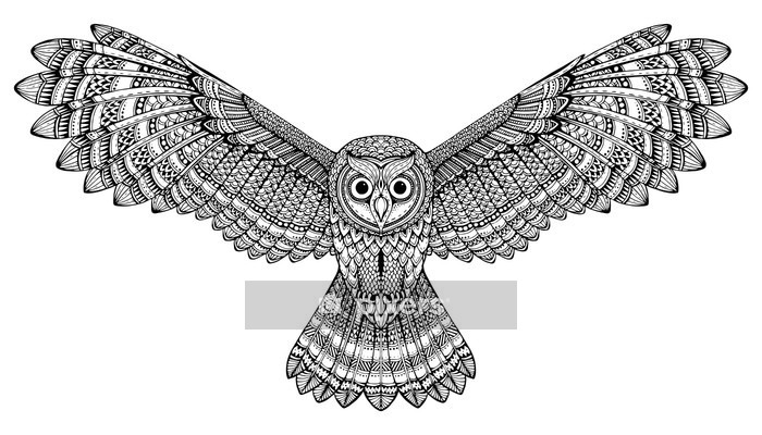 Vector hand drawn flying owl. Black and white zentangle art Wall Decal - Animals