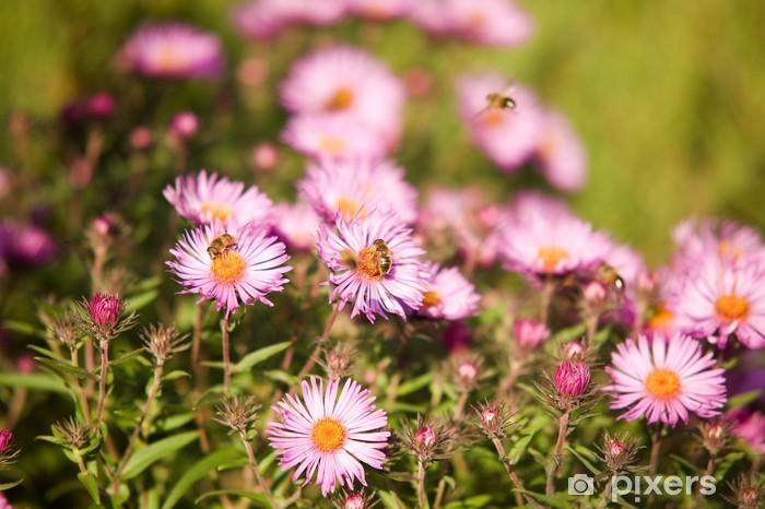 Papier peint vinyle Fleurs d'automne avec des abeilles - Saisons