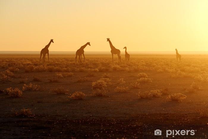 Sticker Pixerstick Herd of giraffes at sunrise - Criteo