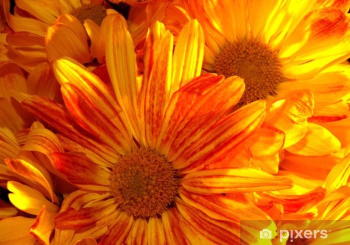 Sticker Pixerstick Belles fleurs jaunes - Fleurs