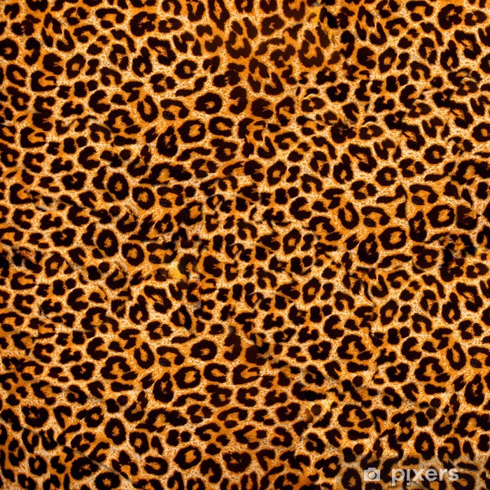 decorative leopard texture Poster - Textures