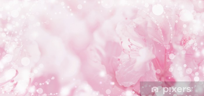 Beautiful Pink Pastel Floral Romantic Background With Light And