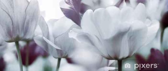 Fototapeta zmywalna Przyciemniane tulipany koncepcja - Uczucia i emocje