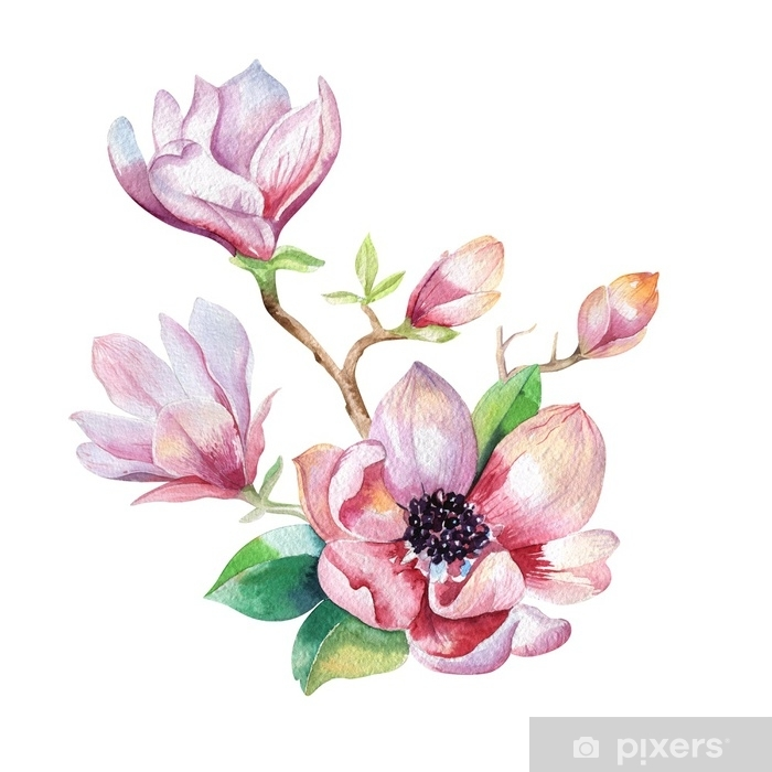 Painting Magnolia Flower Wallpaper Hand Drawn Watercolor Floral Wall Mural Vinyl