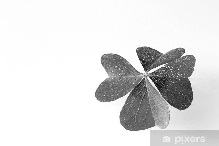 Dört Yapraklı Yonca Duvar Resmi Pixers Haydi Dünyanızı Değiştirelim