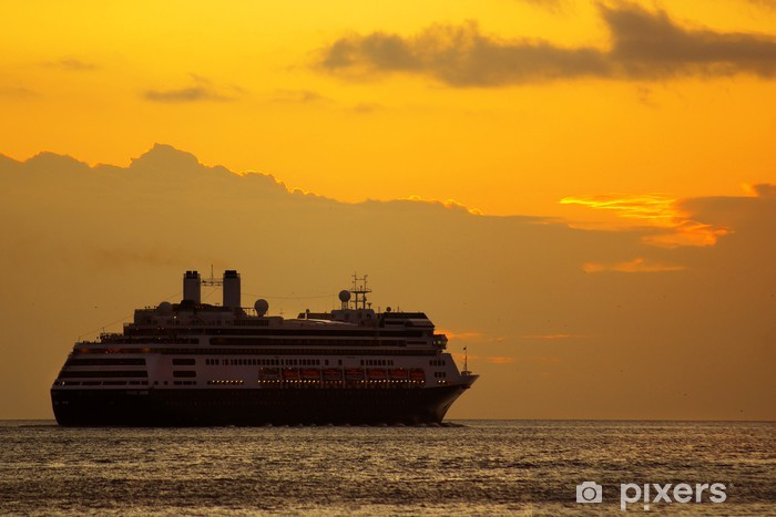 Large cruise ship at sunrise in a journey into the horizon Vinyl Wall Mural - Holidays