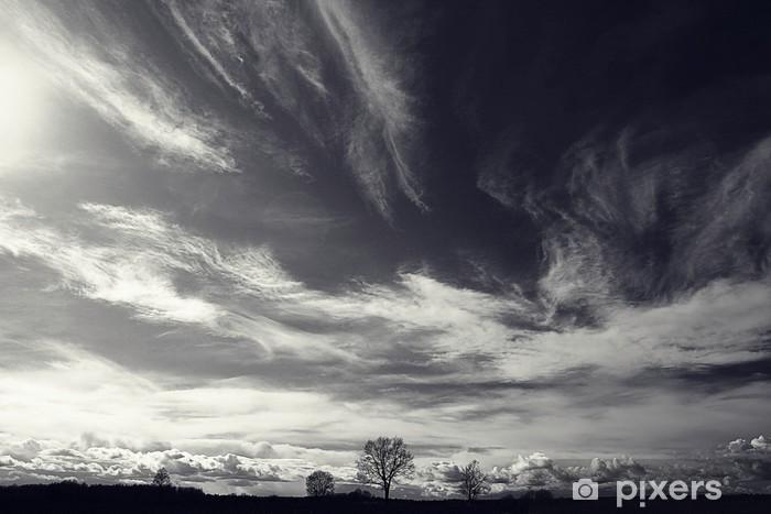 Fototapeta zmywalna Czarno-białe zdjęcie krajobrazu jesienią - Krajobrazy