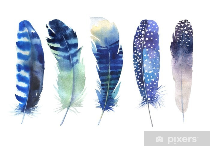Hand drawn watercolor feather set. Boho style. Watercolour illustration Vinyl Wall Mural - Animals