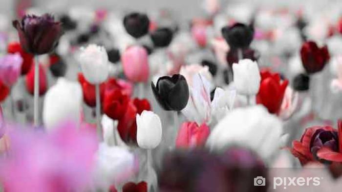 Papier peint vinyle Tulipes teintées trauer - Plantes et fleurs