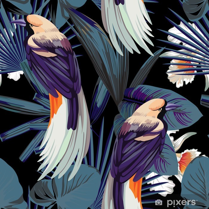 Fugle, orkideer og nat jungle sømløs baggrund Vaskbare fototapet -