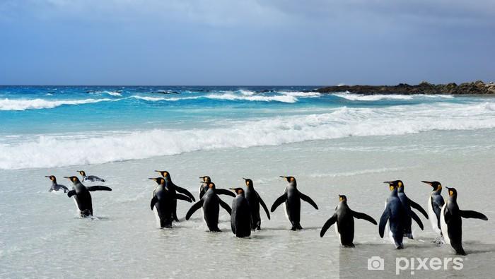 King Penguins Vinyl Wall Mural - Holidays