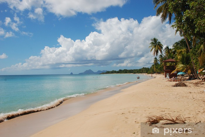 Carta da Parati in Vinile Martinica, spiaggia salina - America