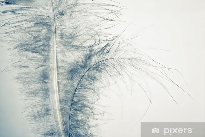 Papier peint vinyle Feather Down - Animaux