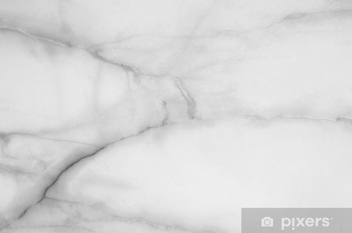 Closeup surface marble floor texture background in black and white tone Vinyl Wall Mural - Graphic Resources