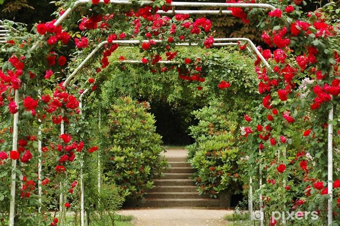 Naklejka Pixerstick Rosengarten - Kwiaty