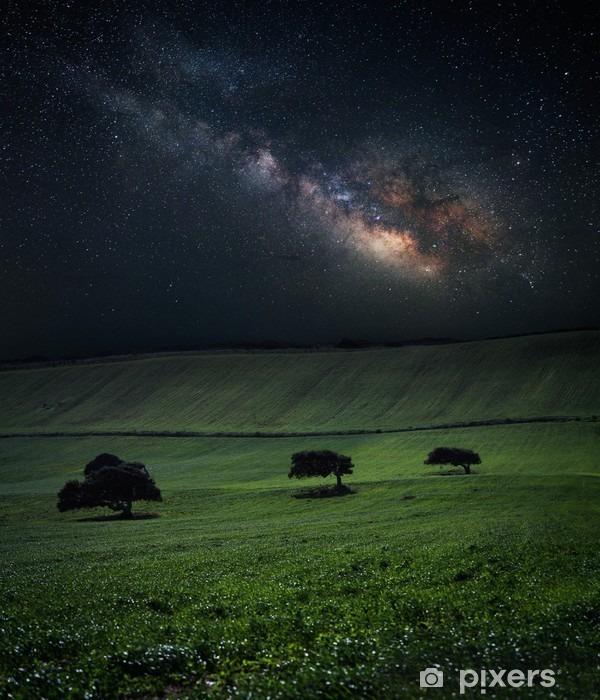 Nat med fantastisk mælklig vej over det grønne felt med tre træer Vinyl fototapet - Landskaber
