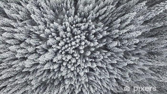Vinyl Fotobehang Bevroren Pine Forest uit de lucht - Landschappen