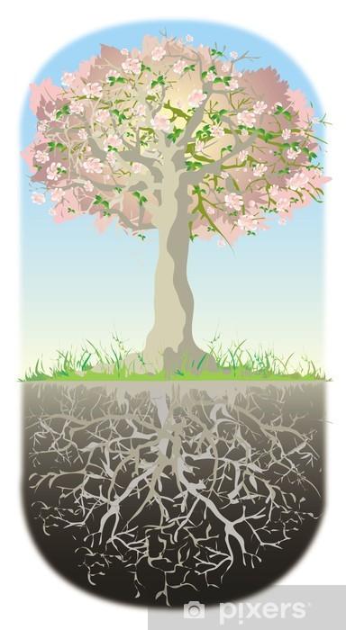 Naklejka Pixerstick Drzewo i jego korzenie - Drzewa