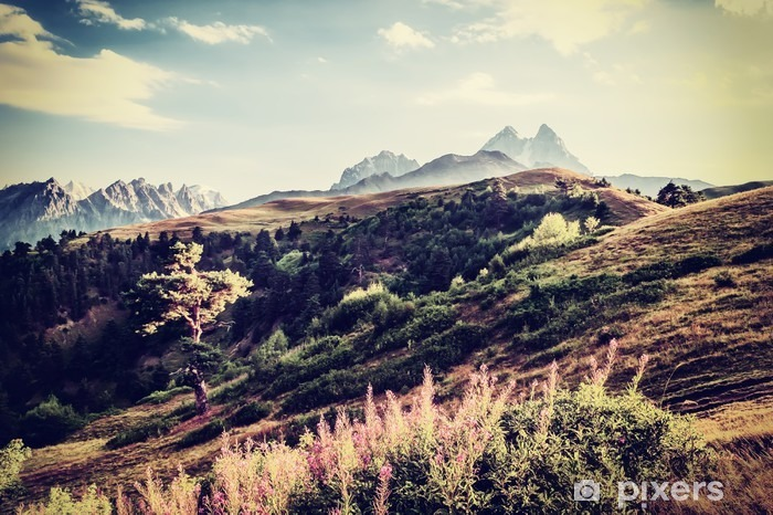 Fototapeta zmywalna Vintage dolinę i góry - Krajobrazy