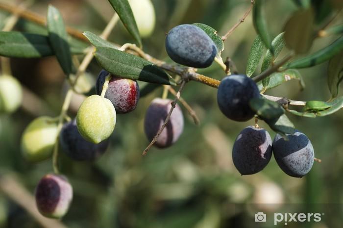 Sticker Pixerstick Invaiate d'olive - Epices, herbes et condiments
