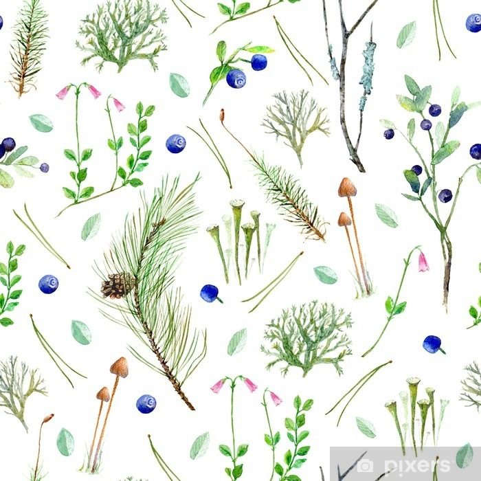 Fototapeta samoprzylepna Sosnowy las kwiatów bezszwowe pattern.Watercolor ilustracji z jagód, gałęzi drzew iglastych, pinecone, mchu, grzybów, lichen.Watercolor Ręcznie rysowane ilustracji. - Rośliny i kwiaty